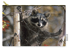 Racoon In Tree Carry-all Pouch