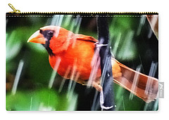 Rain Bird Carry-all Pouch by Lizi Beard-Ward