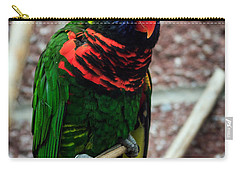 Carry-all Pouch featuring the photograph Rainbow Lory Too by Sennie Pierson