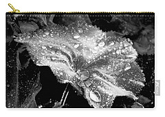 Raindrop Covered Leaf Carry-all Pouch