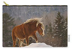 Rancher's Dream Carry-all Pouch