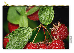 Raspberries Carry-all Pouch by Nikolyn McDonald