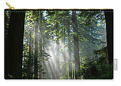 Rays In Redwoods Carry-all Pouch