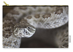 A Rattlesnake Thats Ready To Strike Carry-all Pouch