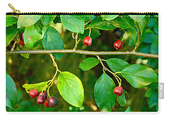 Carry-all Pouch featuring the photograph Red And Black Berries by Johanna Bruwer