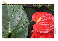 Red Anthurium Flower Carry-all Pouch by Denise Bird