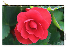 Carry-all Pouch featuring the photograph Red Begonia by Sergey Lukashin