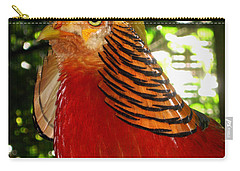 Red Bird Carry-all Pouch by Pamela Walton