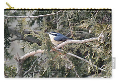 Carry-all Pouch featuring the photograph Red Breasted Nuthatch by Brenda Brown
