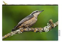 Red Breasted Nuthatch In A Tree Carry-all Pouch