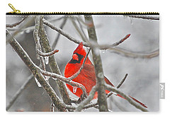 Red Cardinal Northern Bird Carry-all Pouch