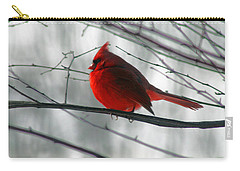 Red Cardinal On Winter Branch  Carry-all Pouch