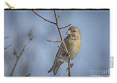 Red Crossbill Female Carry-all Pouch