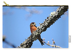 Red Crossbill Finch Carry-all Pouch by Marilyn Wilson