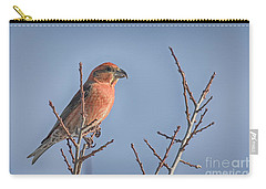 Red Crossbill Male Carry-all Pouch