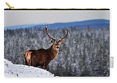 Carry-all Pouch featuring the photograph Red Deer Stag by Gavin Macrae