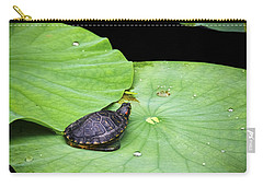 Red-eared Slider Carry-all Pouch by Greg Reed
