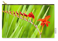Carry-all Pouch featuring the photograph Red Flower Family by Dee Dee  Whittle
