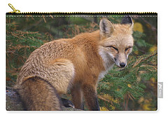 Carry-all Pouch featuring the photograph Red Fox by James Peterson