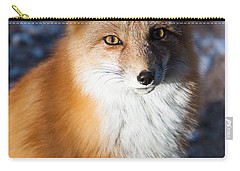 Red Fox Standing Carry-all Pouch
