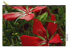 Carry-all Pouch featuring the photograph Red Hibiscus Blooms by James C Thomas