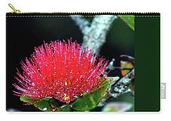 Red Lehua  Kawaiko'olihilihiokalikolehua Carry-all Pouch