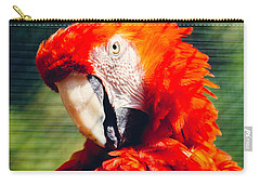 Red Macaw Closeup Carry-all Pouch by Pati Photography