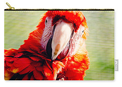 Red Macaw Carry-all Pouch by Pati Photography