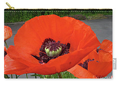 Red Poppy Carry-all Pouch by Barbara Griffin