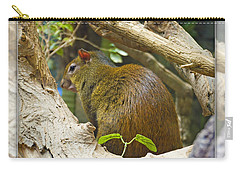 Red-rumped Agouti Carry-all Pouch
