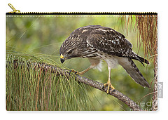 Red Shouldered Hawk Photo Carry-all Pouch by Meg Rousher