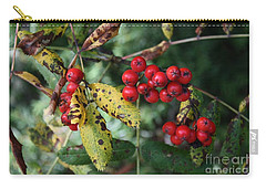 Red Summer Berries - Whistler Carry-all Pouch by Amanda Holmes Tzafrir