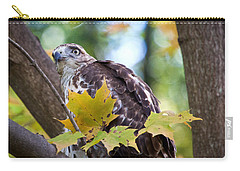Carry-all Pouch featuring the photograph Red Tail Hawk Closeup by Eleanor Abramson