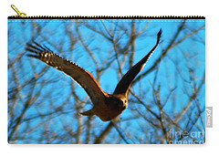 Carry-all Pouch featuring the photograph Red Tail Hawk In Flight by Peggy Franz