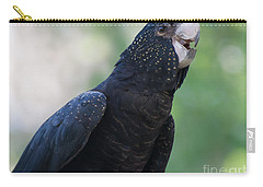 Red-tailed Black Cockatoo Carry-all Pouch