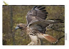 Red Tailed Hawk Carry-all Pouch
