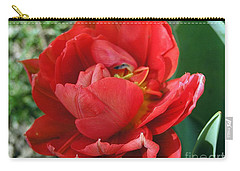 Carry-all Pouch featuring the photograph Red Tulip by Vesna Martinjak