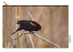 Red Winged Blackbird 1 Carry-all Pouch