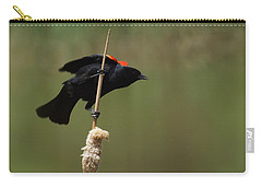 Red Winged Blackbird 3 Carry-all Pouch