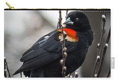 Carry-all Pouch featuring the photograph Red Winged Blackbird In Pussy Willows by Patti Deters