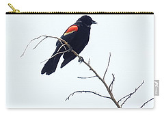 Red-winged Blackbird Carry-all Pouch by Paul  Wilford