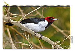 Carry-all Pouch featuring the photograph Redhead by Adam Olsen