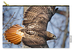 Redtail Hawk Square Carry-all Pouch by Bill Wakeley