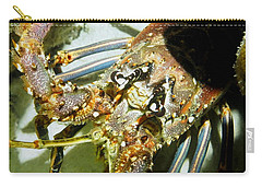 Carry-all Pouch featuring the photograph Reef Lobster Close Up Spotlight by Amy McDaniel
