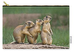 Relaxing Utah Prairie Dogs Cynomys Parvidens Wild Utah Carry-all Pouch