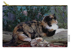 Resting Calico Cat Carry-all Pouch