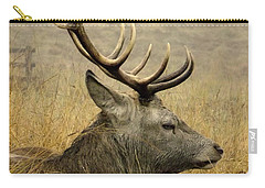 Resting Stag Carry-all Pouch by Linsey Williams