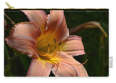 Carry-all Pouch featuring the photograph Rich Day by Larry Bishop