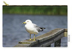 Ring-billed Gull Carry-all Pouch by Alyce Taylor