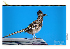 Roadrunner Carry-all Pouch by Robert Bales